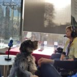 Intensive Care Society | Pets as Therapy
